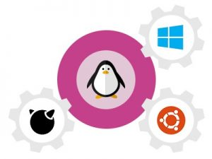 Memilih Web Hosting Linux atau Windows